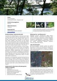 Stechlinsee-Gebiet - NABU-Stiftung Nationales Naturerbe