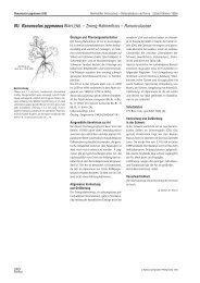 Merkblatt Artenschutz - Info Flora
