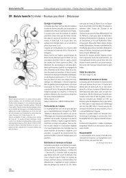 CR Betula humilis SCHRANK – Bouleau peu élevé ... - Info Flora