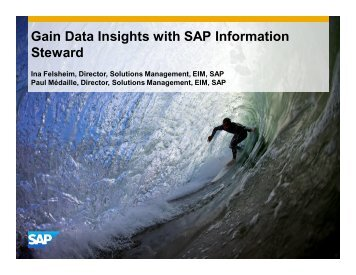 gain-data-insights-with-sap-information-steward_44251