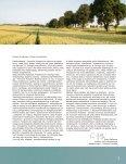 REGION IN AKTION - Amadeu Antonio Stiftung - Page 5