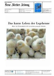 Das kurze Leben der Legehenne - Bioaktuell.ch