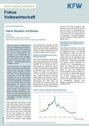 Irland: Rückkehr mit Risiken, November 2013 - KfW