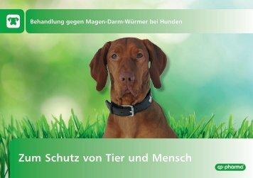 Behandlung von Magen-Darm-Würmern beim Hund - cp-pharma