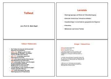 Tollwut, Akgül WS 2010 - UK-Online