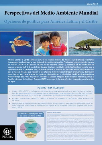 Español - Programa de Naciones Unidas para el Medio Ambiente