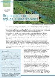 Reposición de aguas subterráneas