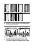 Oberflächenhärtung von austenitischen Stählen unter ... - IWT Bremen - Seite 7