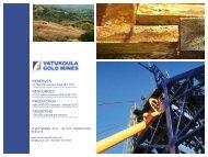 Vatukoula Gold Mines One2One Investor Presentation - Proactive ...