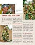 Helfen Sie mit! Haiti - Christoffel-Blindenmission - Seite 6