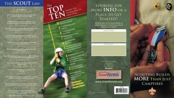 Scouting Builds more than just campfires brochure - Boy Scouts of ...
