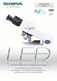 LED-Beleuchtung mit langer Lebensdauer - Ryf AG