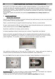 Activite-champs-vectoriels-en pdf