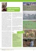 MPH Magazin 2/2013 als PDF - MPH - Mensch Pferd Hund - Page 3
