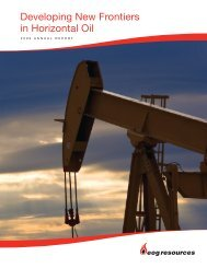 2009 Annual Report: Full Report - EOG Resources, Inc.