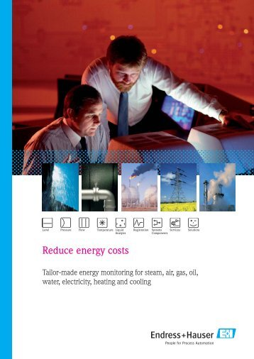 Reduce energy costs - Endress + Hauser