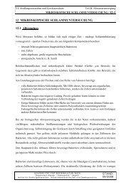 Kapitel B12 / MIKROSKOPISCHE SCHLAMMUNTERSUCHUNG ...