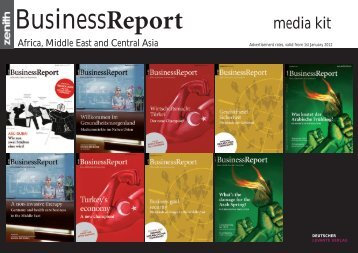 BusinessReport - Zenith