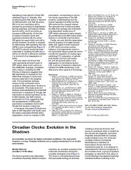 Circadian Clocks: Evolution in the Shadows