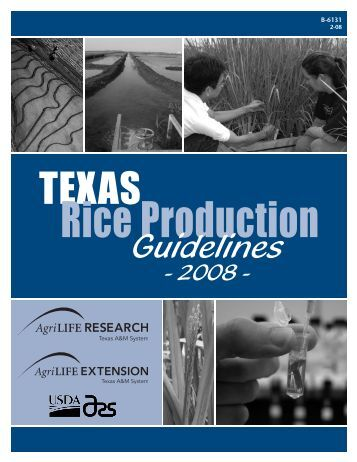 2008 Rice Production Guidelines - Texas A&M AgriLIFE Research ...