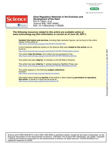 Olson E.N. 2006. Gene regulatory networks in ... - UT Southwestern