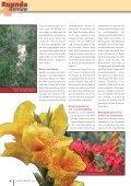 Ausgabe 2/2008 - Partnerschaft Ruanda - Seite 4