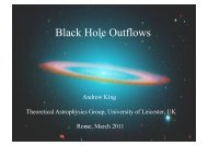 Black Hole Outflows
