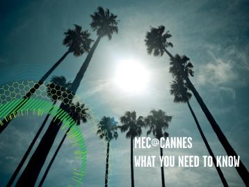 Download this report - MEC