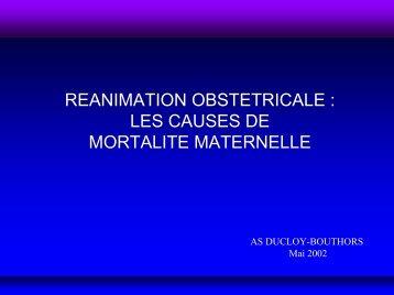 Les causes de mortalité maternelle - JLAR