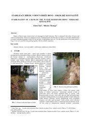 stabilizace břehu vodní nádrže brno – sokolské ... - Fakulta stavební