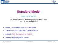 Standard Model - Herbstschule Maria Laach
