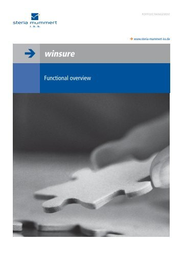 winsure functional overview Flyer - Steria