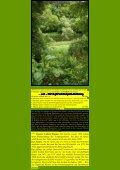E 63 - Kunstwanderungen - Seite 5