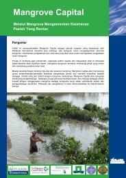 Brochure Mangrove Capital (Indonesia).pdf - Wetlands International ...