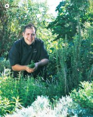 Roberto's Dagga dishes - Restaurant Association of South Africa