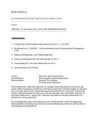 Protokoll EG 19.11.2010 - Seengen