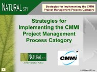 Strategies for Implementing the CMMI Project Management Process ...