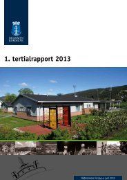 1. tertialrapport 2013 (pdf). - Drammen kommune