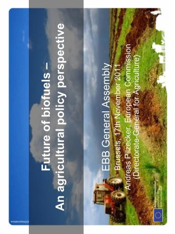 Future Of Biofuels - An Agriculture Policy Perspective - European ...