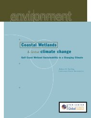 Gulf Coast Wetland Sustainability in a Changing Climate