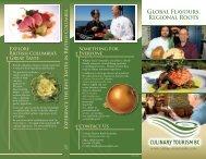 view public brochure pdf