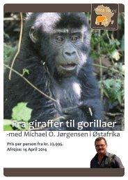 Fra giraffer til gorillaer