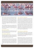 Fra giraffer til gorillaer - Page 2