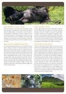 Fra giraffer til gorillaer - Page 3