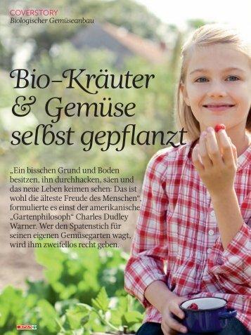 Bio-Kräuter & Gemüse selbst gepflanzt