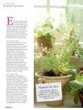 Bio-Kräuter & Gemüse selbst gepflanzt - Seite 3