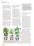 Bio-Kräuter & Gemüse selbst gepflanzt - Seite 7