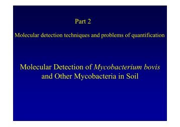 Molecular Detection of Mycobacterium bovis and Other ...