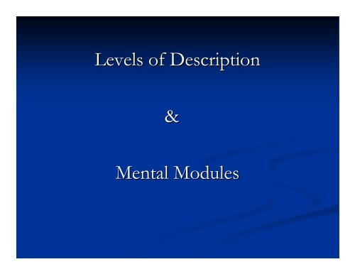 Levels of Description & Mental Modules