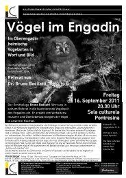 Vögel im Engadin - Kunstwege